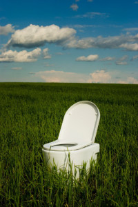 Toilet bowl in a field of green grass